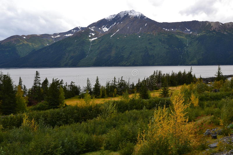 Точка зрения Аляски Seward стоковое изображение rf