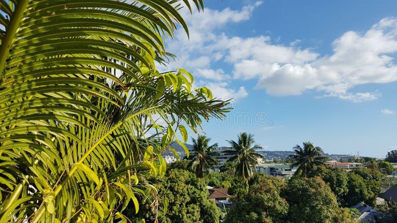 Точка зрения на городе Французской Полинезии Папеэте стоковое изображение