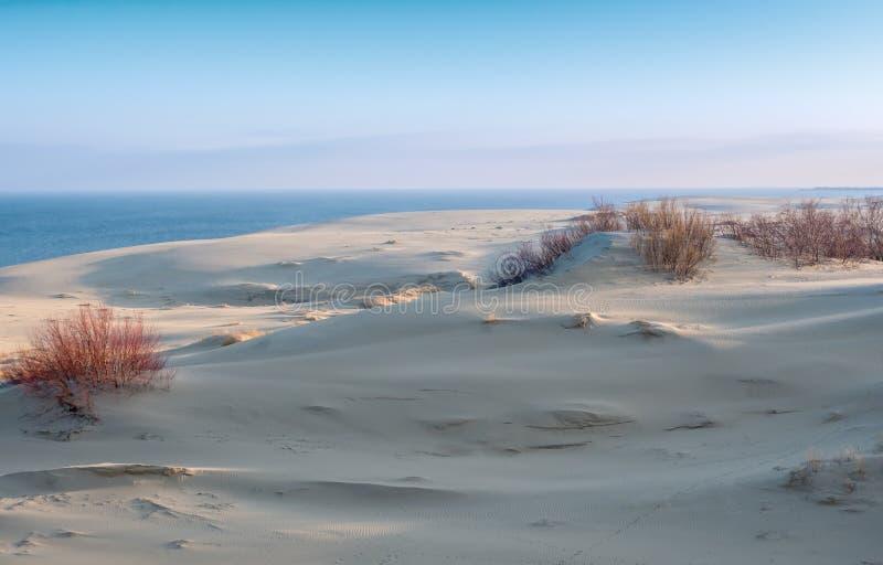 Точка зрения песчанных дюн на вертеле Curonian стоковые изображения