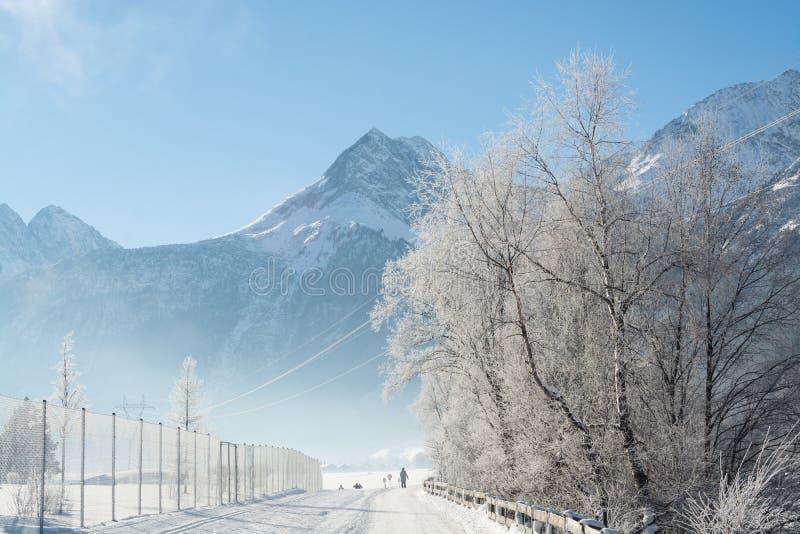 Точный ландшафт гор зимы день солнечный Спад зимы Яркие цвета Река леса леса зимы Ветви в hoar стоковое фото