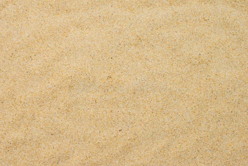 Точный песок пляжа в солнце лета стоковая фотография rf
