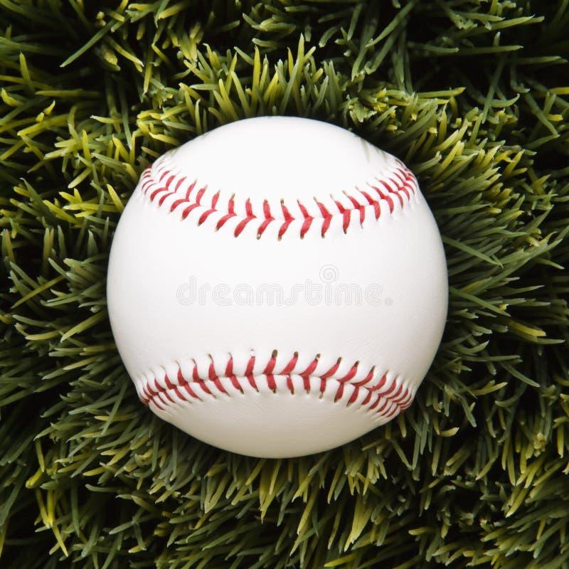 трава бейсбола стоковые изображения