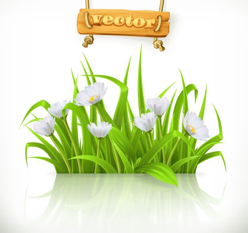 Трава весны, значок вектора иллюстрация вектора