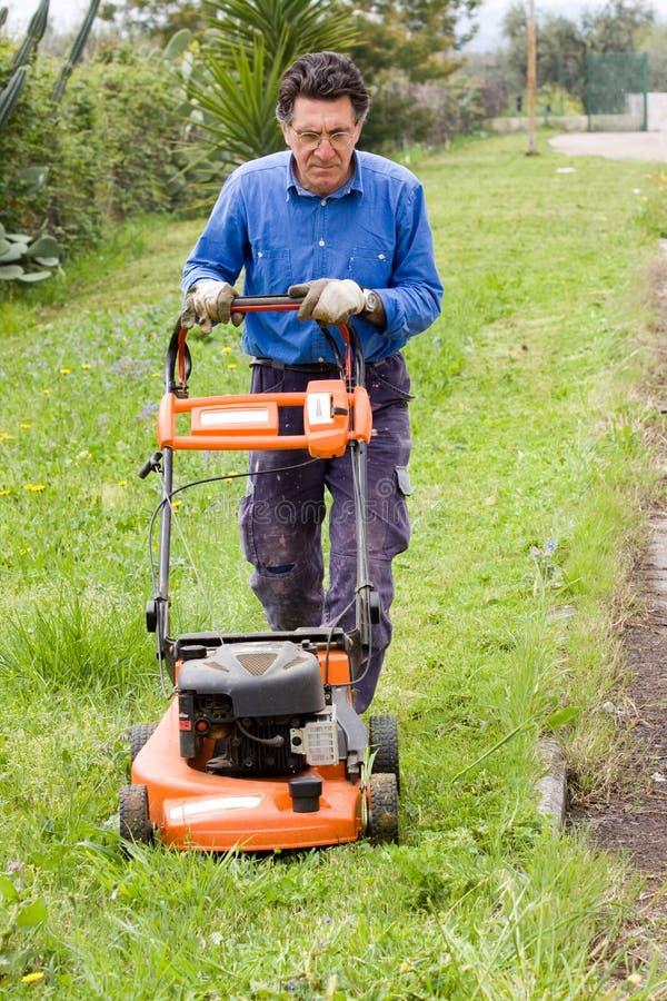 трава вырезывания стоковые фото