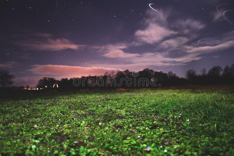 Трава и ночное небо стоковое фото rf