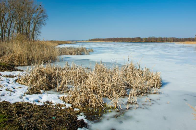 Трава и снег на краю замороженного озера Горизонт и голубое небо стоковое изображение