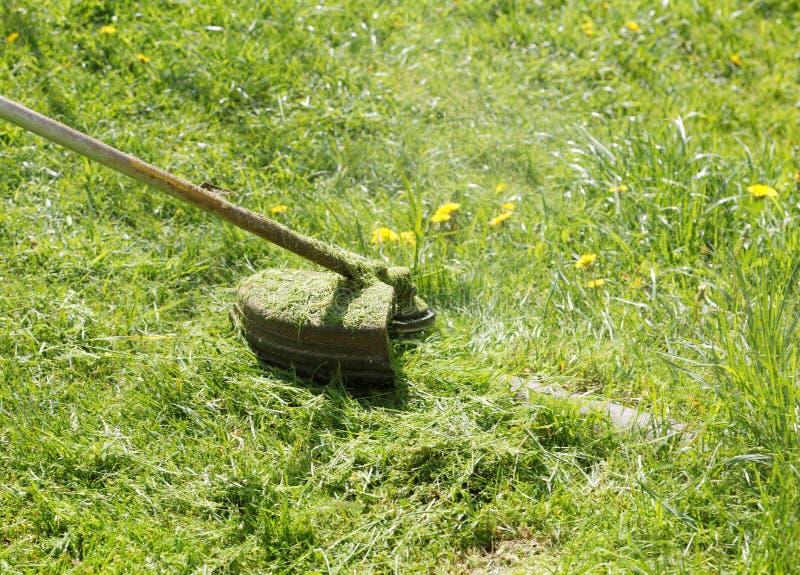 Трава конца-вверх косилки кося стоковая фотография