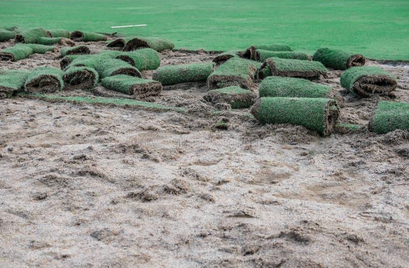 Трава лужайки крена зеленая для класть на сад стоковое фото rf