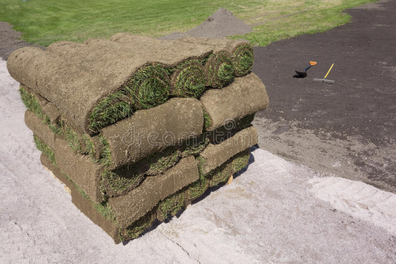 Трава на паллете стоковое изображение rf
