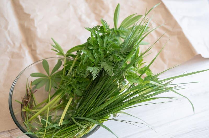 Трава поля с lupine листьями в шаре воды на таблице стоковое изображение rf