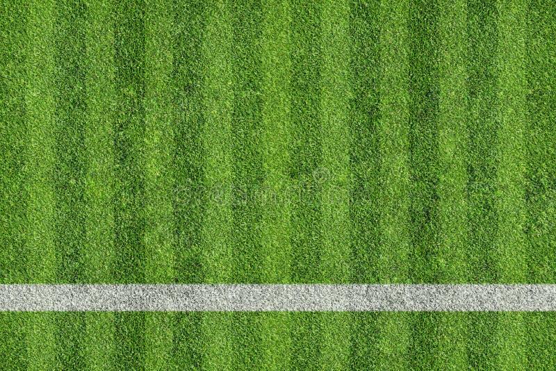 Трава поля спорта стоковое фото rf
