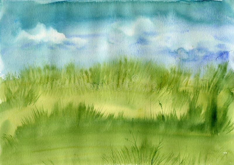 Трава луга и голубое небо стоковая фотография rf