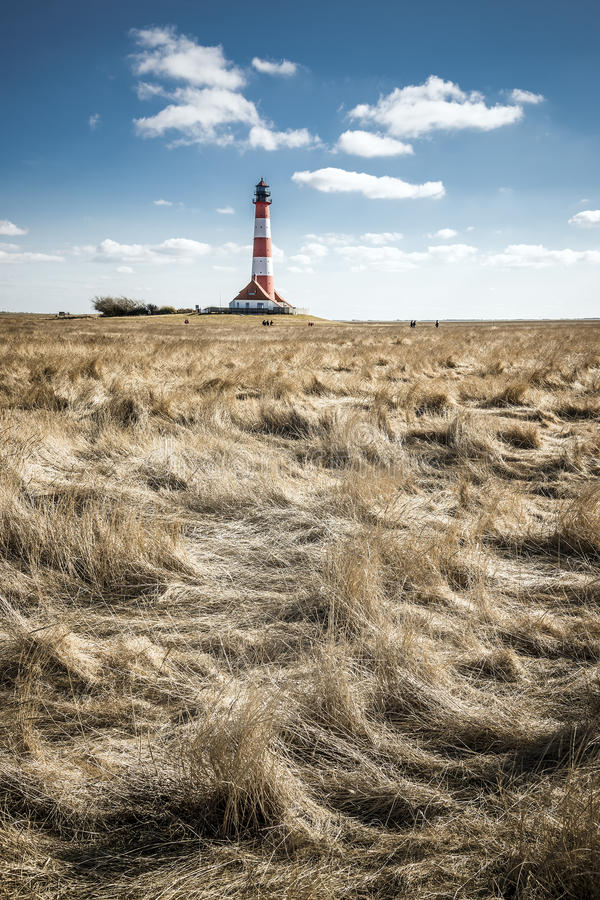 Gras с маяком стоковое изображение rf
