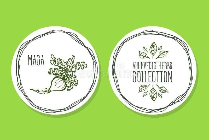 Трава Ayurvedic - ярлык продукта с Maca бесплатная иллюстрация