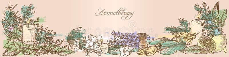 Травы ароматерапии бесплатная иллюстрация