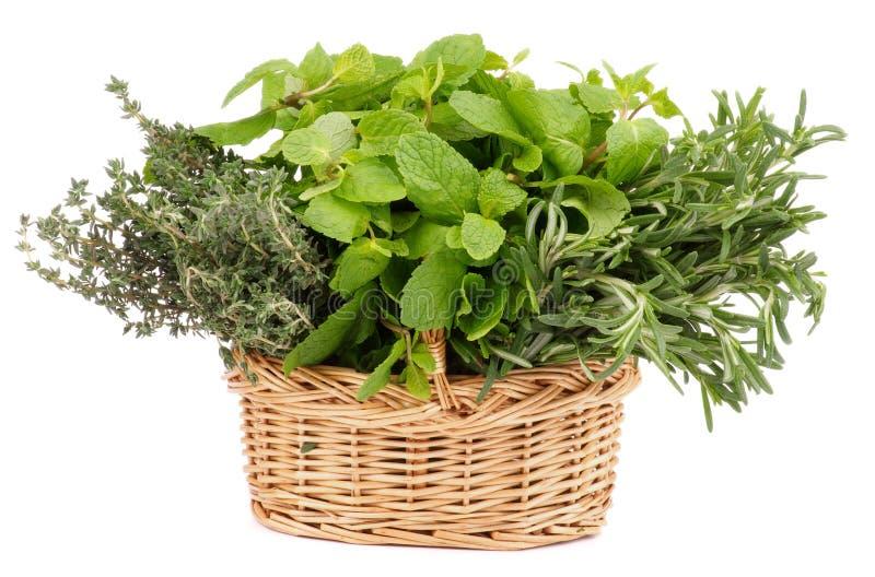 Травы в корзине стоковые фото