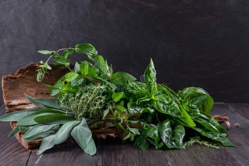 Травы свежего сада органические на расшиве дерева Базилик, мята, тимиан, шалфей, петрушка стоковое фото rf