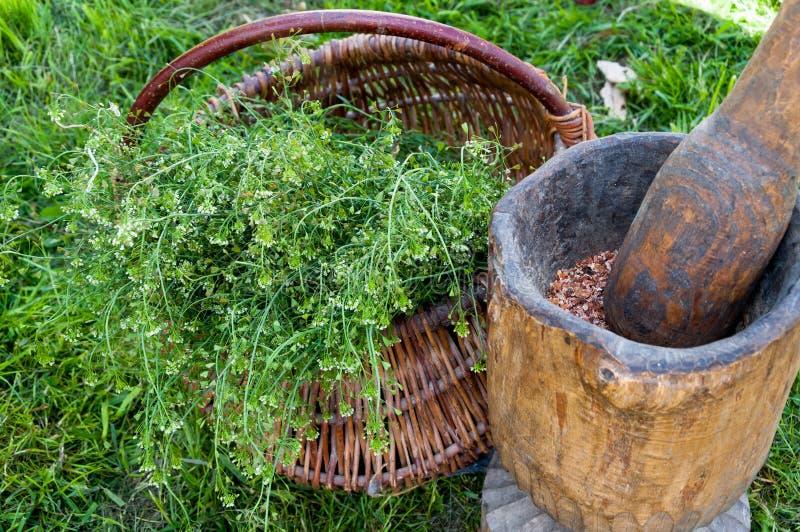 Травы для здорового прожития стоковое фото rf