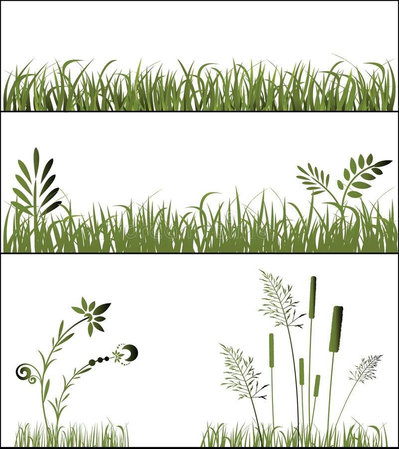 травы иллюстрация штока