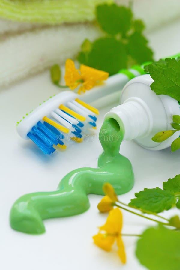 Травяная зубная паста и зубная щетка стоковое изображение