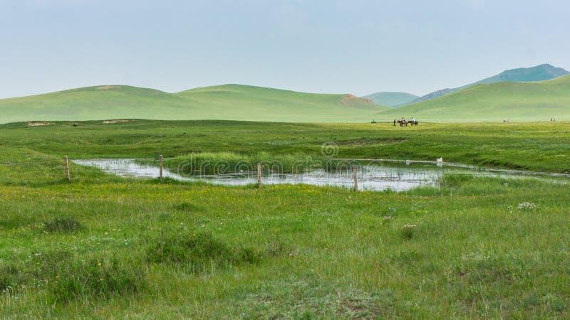 травянистый ландшафт холмов стоковая фотография rf