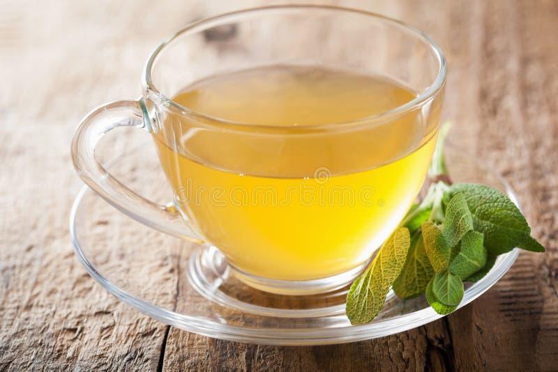Травяной мудрый чай с зелеными лист в стеклянной чашке стоковые фотографии rf