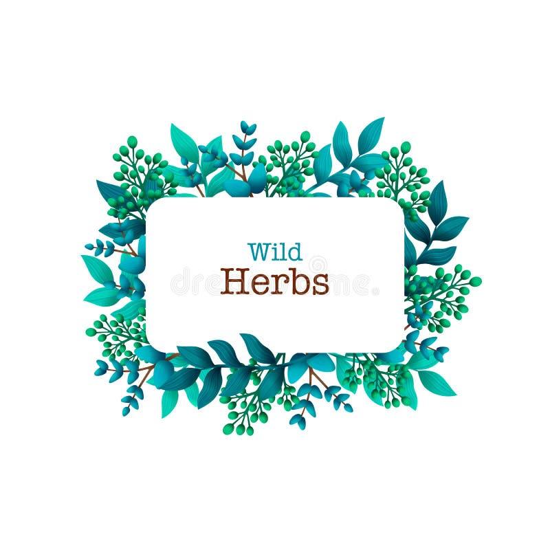 Травяной пре-сделанный состав Горизонтальная рамка с листьями и ветвями Травы лета одичалые с космосом для вашего текста иллюстрация вектора