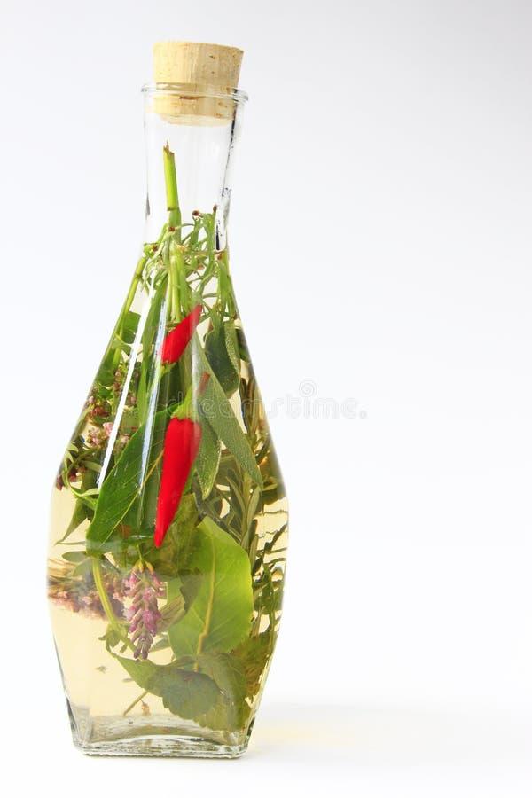 Травяной уксус с chili стоковая фотография rf