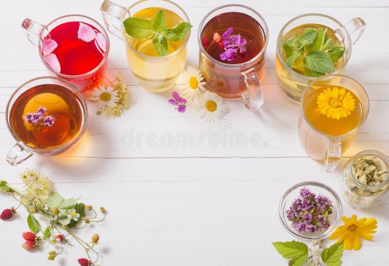Травяной чай в чашках на белой предпосылке стоковая фотография rf