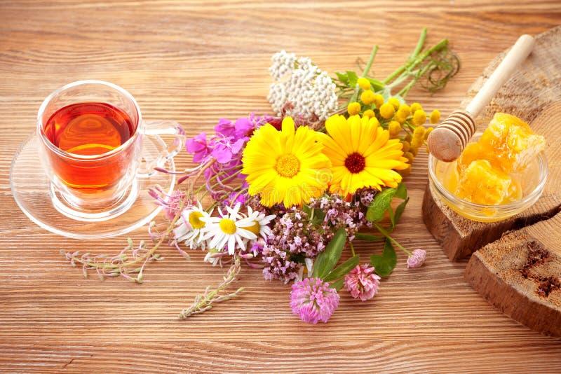 Травяной чай и травы стоковые изображения