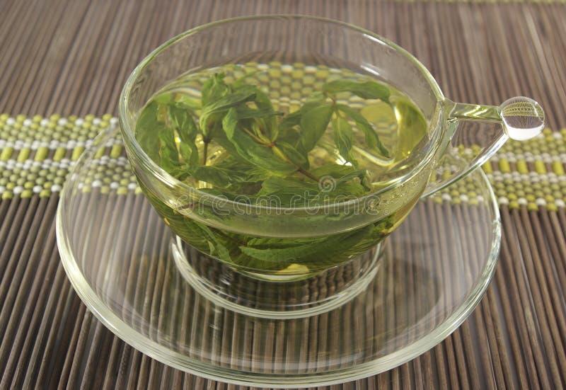 Травяной чай мяты стоковые изображения rf
