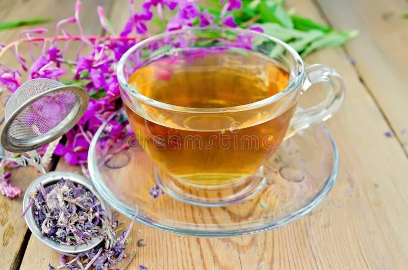 Травяной чай от fireweed в стеклянной чашке с стрейнером стоковое изображение