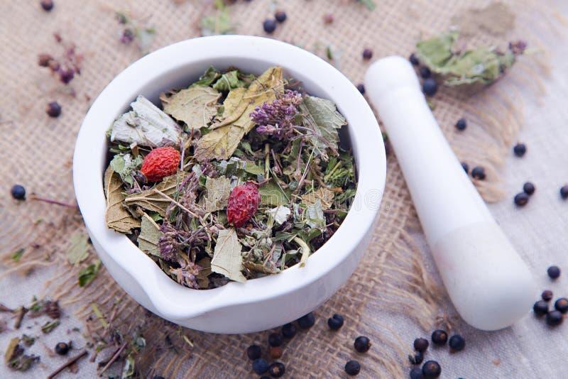 Травяной чай с ежевикой в белом миномете стоковые фото