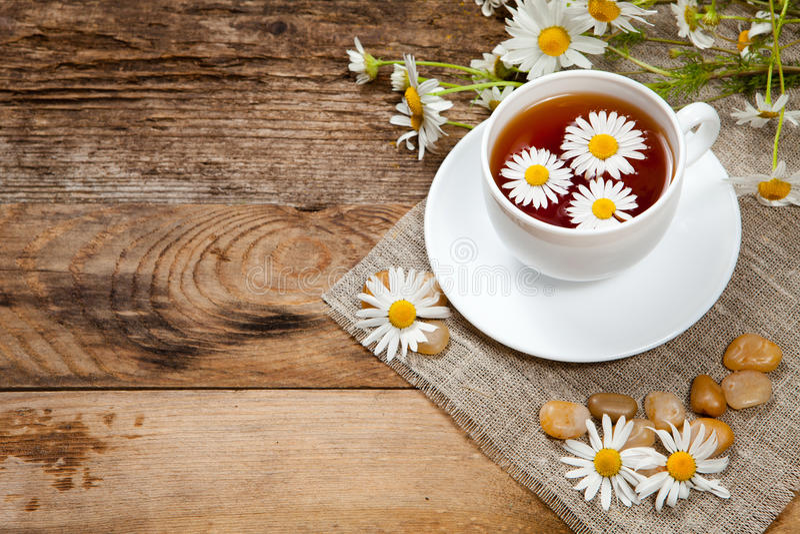 Травяной чай с стоцветом стоковое изображение