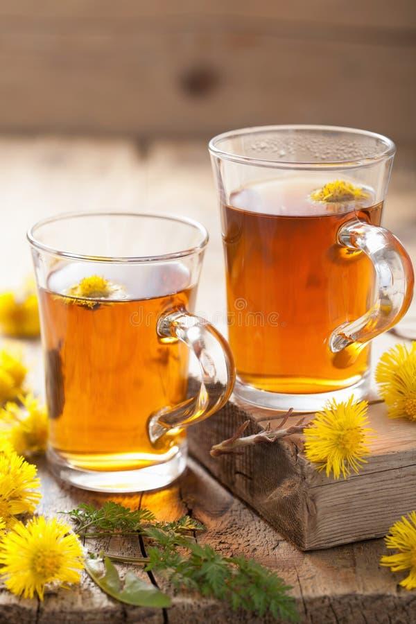 Травяной чай с цветками мать-и-мачеха стоковое изображение