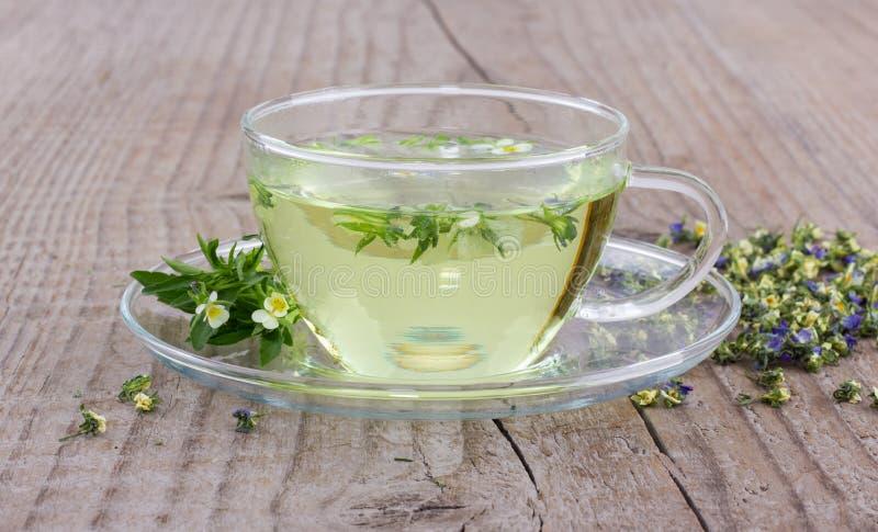 Травяной чай с heartsease стоковое изображение