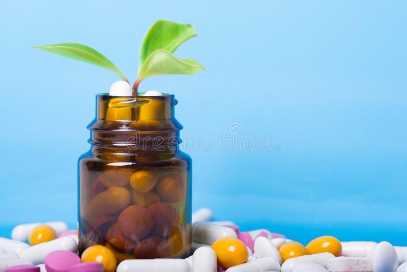 Травяные таблетки с медицинским заводом Естественная концепция медицины tradicional стоковое изображение rf