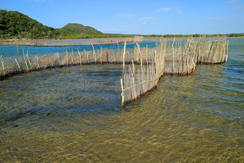 Традиционная ловушка рыб - залив Kosi стоковые изображения rf