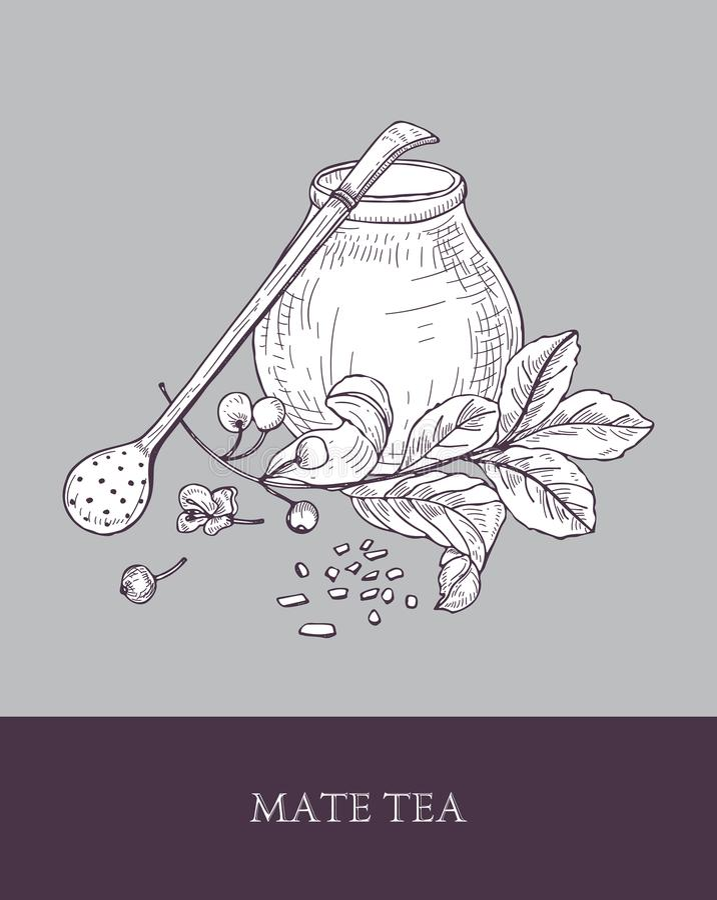 Традиционная тыква калебаса, bombilla с фильтром или соломой и yerba сопрягают завод чая с листьями и ягоды вручают вычерченное иллюстрация вектора