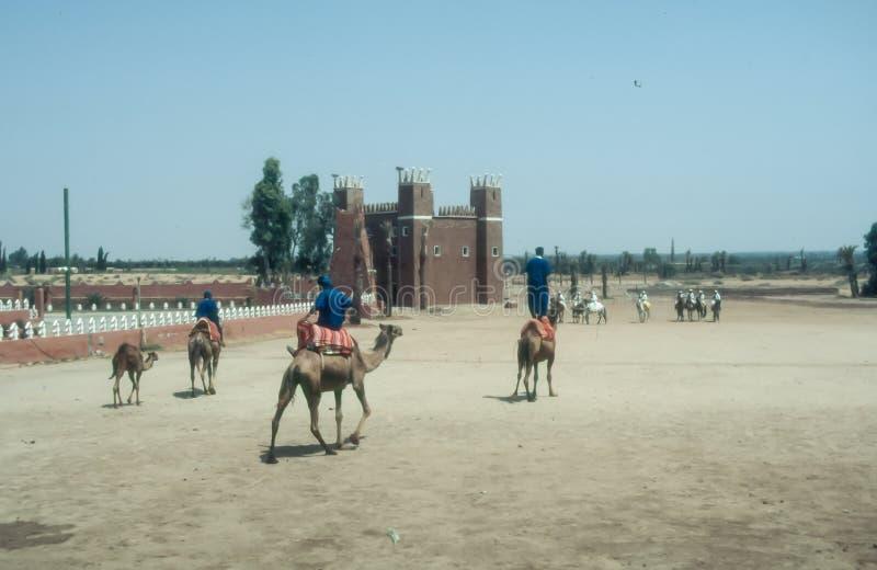 Традиционная фантазия в Марокко стоковое изображение