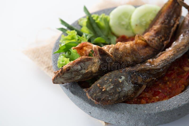 Традиционное индонезийское кулинарное lele pecel еды стоковое изображение rf