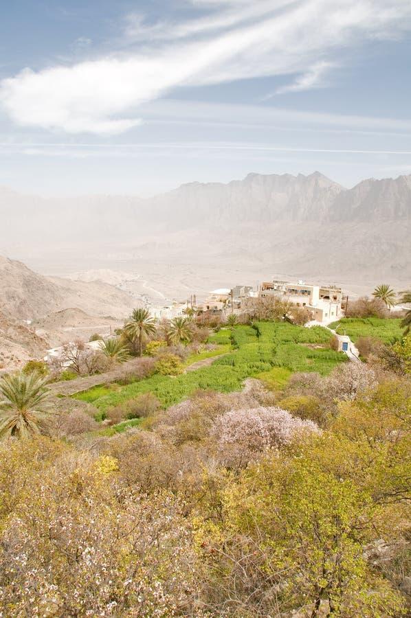 традиционное фермы omani стоковое изображение