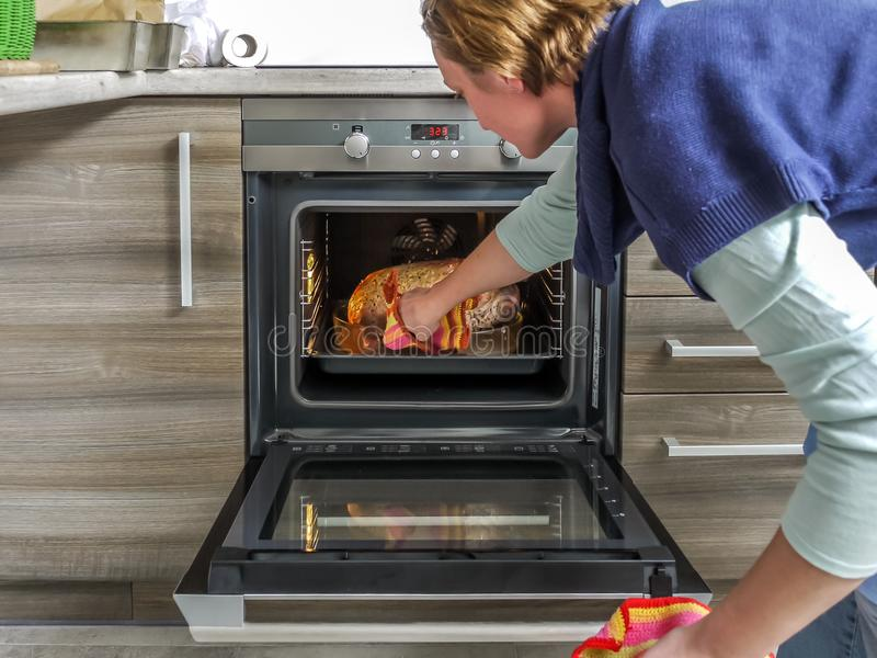 Традиционной гусыня зажаренная в духовке заполированностью стоковое фото