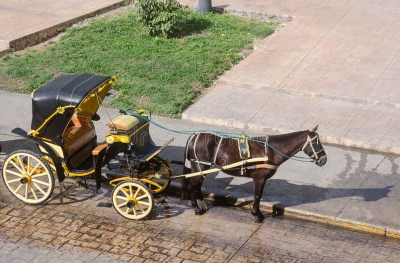 Традиционной экипаж нарисованный лошадью на Izamal, Юкатане, Мексике стоковые фото