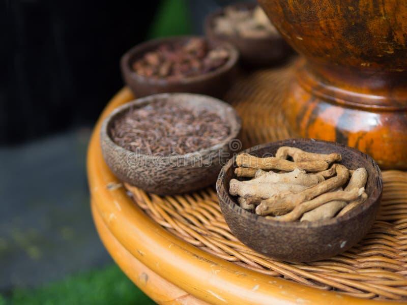 Традиционные индонезийские специи используемые в обработках курорта Jamu стоковые изображения