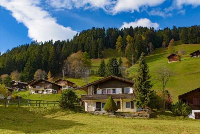 Традиционные швейцарские дома стиля на зеленых холмах с лесом в зоне Альп Швейцарии, Европы стоковое фото
