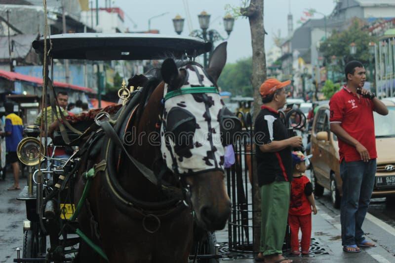 Традиционный городок стоковые фото
