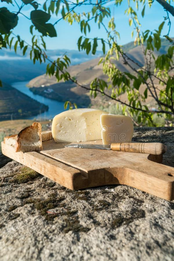 Традиционный португальский мягкий сыр коровы стоковое изображение rf