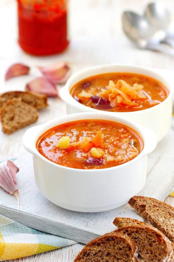 Традиционный русский украинский vegetable суп борща стоковые изображения