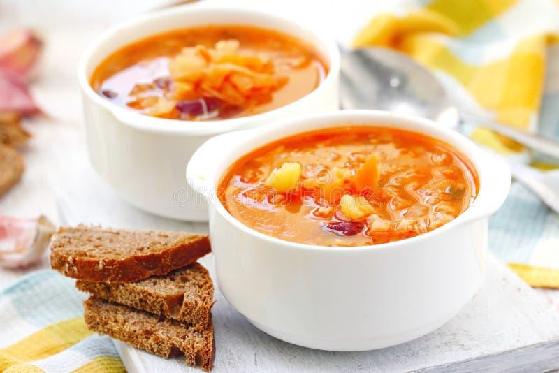Традиционный русский украинский vegetable суп борща стоковое фото
